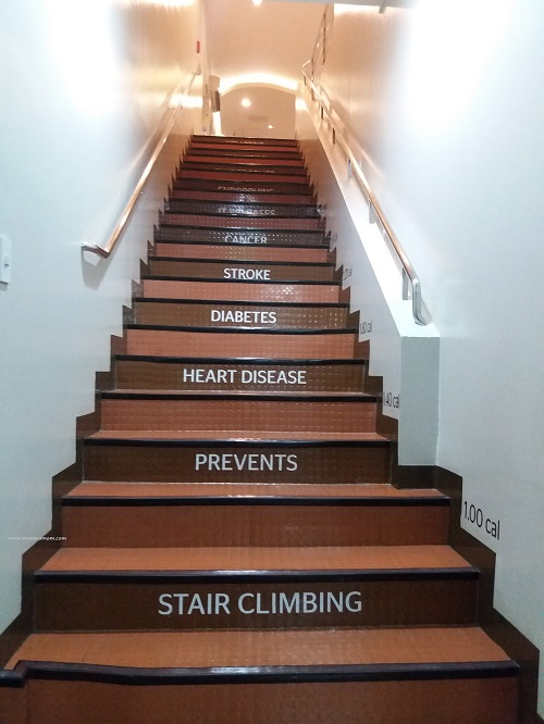 Aster Stairs