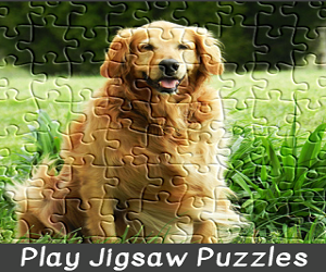 Free Jigsaw Puzzles