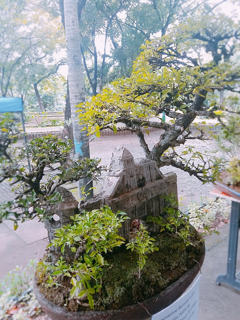 Innovative-Bonsai-with-Intramuros-ruinsMorena-Mom